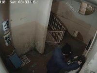 Fotokapana Dönüşen Apartman Güvenlik Kamerası vol. 2