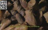 Neanertallilerin Mağara İçinde Gizli Ayin Yerleri