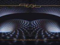 TOOL - Fear Inoculum (Audio)