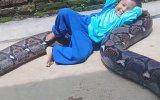 Dev Piton Yılanını Oyuncak Yerine Koyan Ufaklık