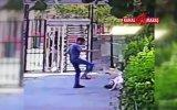 Yavru Kediyi Parçalayan Pitbull