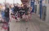 Örümcek Bisiklet