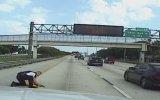 Araba Çarpan Köpeğin Hayatını Kurtaran Polis