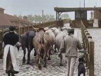 Paris'de 1900'lü Yıllar