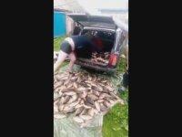 Balığın Kökünü Kurutan Ruslar