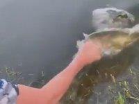 Eliyle Balık Yakalayan Genç