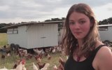 Hanım Abladan Organik Yumurta Tanıtımı