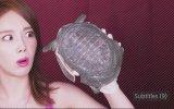 Asmr Kaplumbağa Çorbası