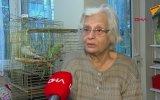 Evinde Karga Beslediği İçin Para Cezası Kesilen Kadın