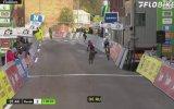Yarışta Bisikletçilere Salça Olan Köpek