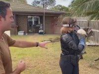 Koalayı Vahşi Ayı Diye Yutturmak