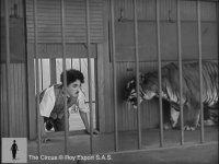 Charlie Chaplin Aslanla Aynı Kafeste (1928)