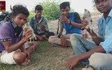 Hint Usulü Fare Yemeği