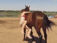 Üzerine Binemeyen Kıza Yardımcı Olan At