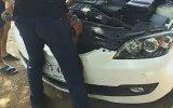 Arabanın Motorundan Çıkan Kral Kobra