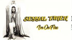 Seyyal Taner - I'm On Fire