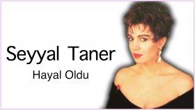 Seyyal Taner - Hayal Oldu