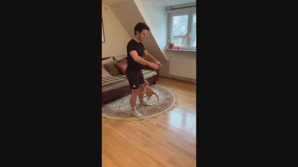 Evde Spora Karşı Olan Kedi