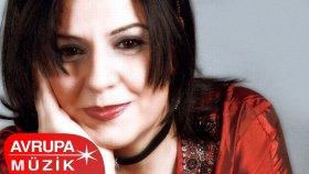 Nesrin Yetkin - Git Gayrı (Official Audio)