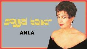 Seyyal Taner - Anla