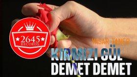 Yaşar Taner - Kırmızı Gül Demet Demet (Enstrumental)