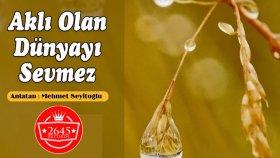 Mehmet Seyitoğlu - Aklı Olan Dünyayı Sevmez