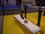 wittmann robot gösterisi