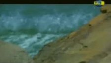 Ferman Akdeniz - Dayanamam (Orjinal Klip)