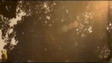 Nilufer - Olmadi Gitti (Yepyeni Video Klip 2009 Hq