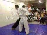 sakarya aikido