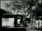 Awaara Hoon-Avareyim  By Tercumeturk