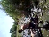 malatya  arguvan balık sefası