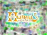 Humus- Sevin Gayrı