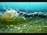Melis Bilen - Summertime