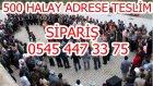 Halay Halay Halaylar  : 500 Tane Halay İçin : 05454473375