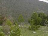 Ayas Köyü