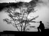 Yalnızlık Yurdun Olur - Harun Aydın