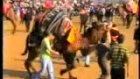 aydınpulluk 2 devesinin kasım 2009 turanlar ilk gü