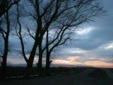 Engin Nurşani - Gel Desem