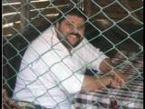 Mustafa Özarslan - Armut Ağacına Yaslanmıyassın