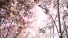 fikret kuşkan-zuhal olcay-gizli yüz filmi