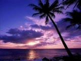 kalbimdeki deniz (ince saz)