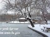 Her Yerde Kar Var