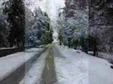 Güney Köyünde Kar Var.
