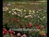 ferdi tayfur-koparma gülleri(flimden)
