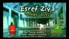 Esref Ziya Olmadi Dost
