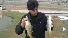 beyşehir gölü balık avı