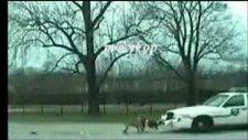 pitbull polis arabasını böyle parçaladı!