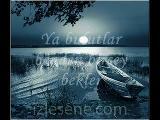Mona Rosa Zambaklar Www.islam-Sohbet.com