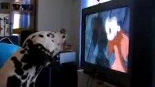 çizgi film izleyen köpeğin etkilenmesi